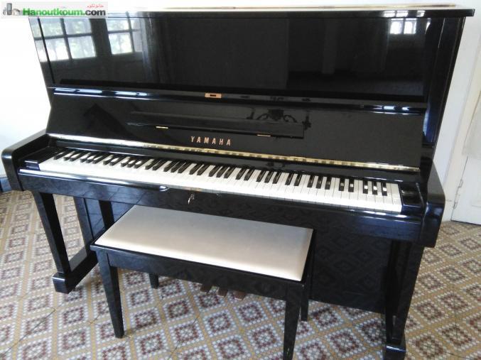 petites annonces instruments de musique. Black Bedroom Furniture Sets. Home Design Ideas